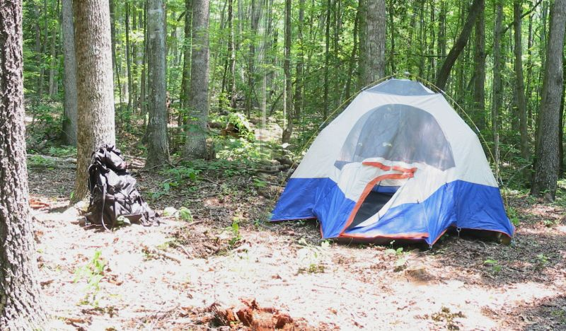 Backwoods Tent Site